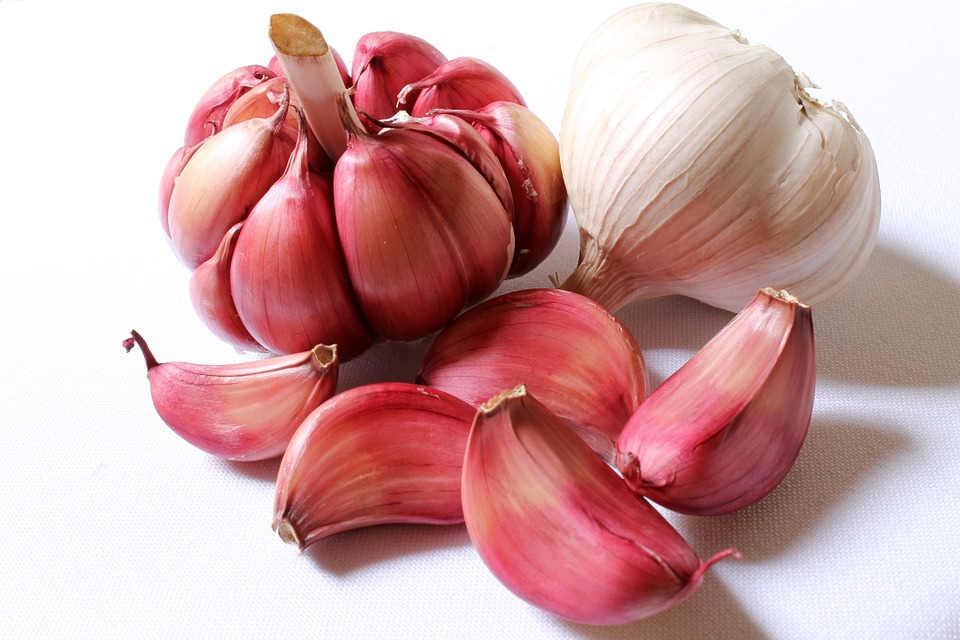 benefici dell'aglio